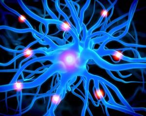 neurochanges